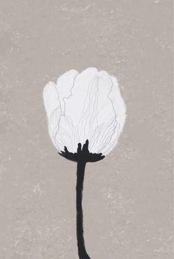 "ILLUSTRATION OF A WHITE FLOWER POSTER 15x19"""