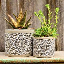Aztec Hexagon Succulents Pot Set of 2