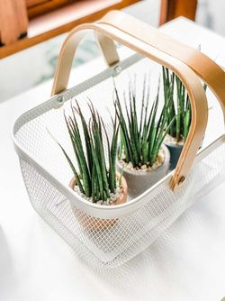 Mayfair & Co. TRONDHEIM Wire Mesh Basket with Double Wood handles