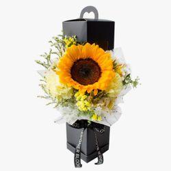 SUNSHINE CORNER BOX