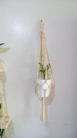 Plant Hanger #1