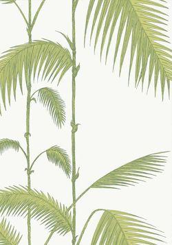 Cole & Son (Palm Jungle 95-1009)