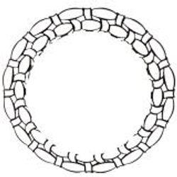 Nest Design Lab Oval Wall Mirror Round