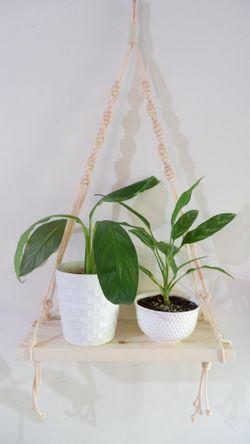Plant Hanger #3