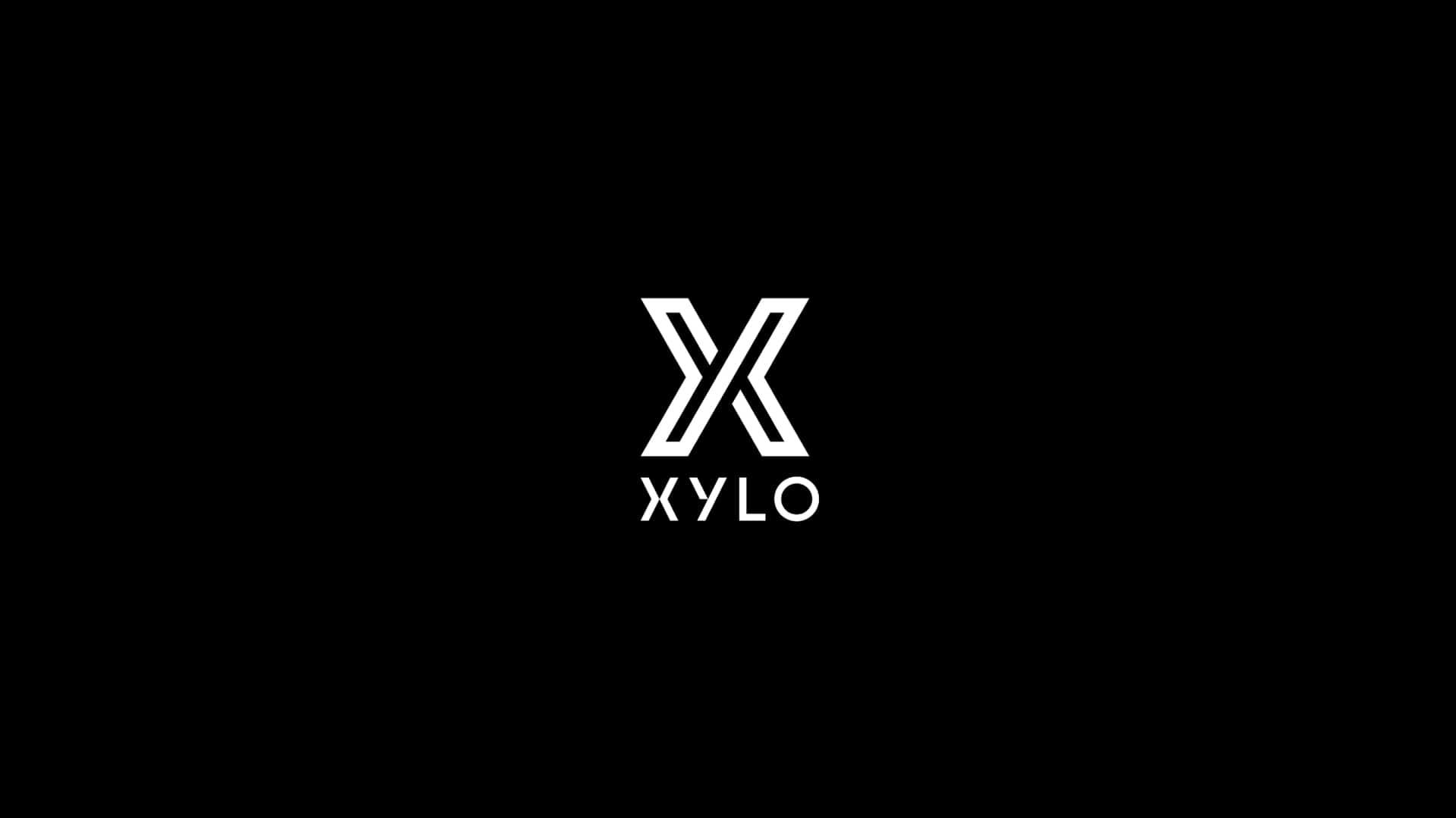 Xylo At The Palace