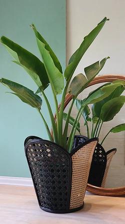 La Vie Planter For Preorder