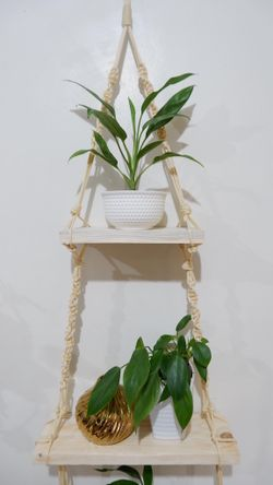 Plant Hanger #4