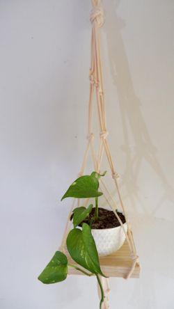 Plant Hanger #2