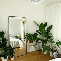 Rounded Rectangle Mirror (PRE ORDER)